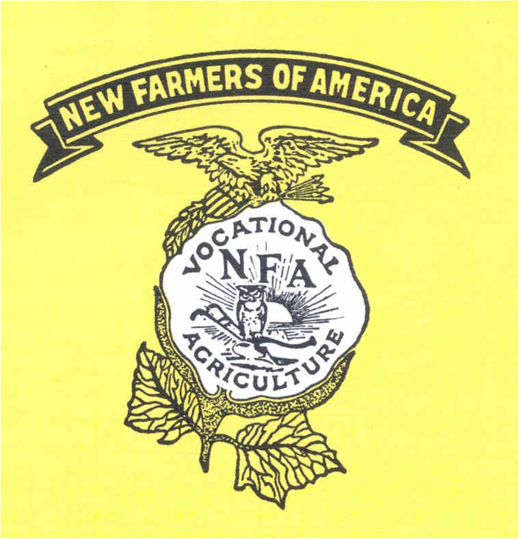 Ffa Emblem Meaning